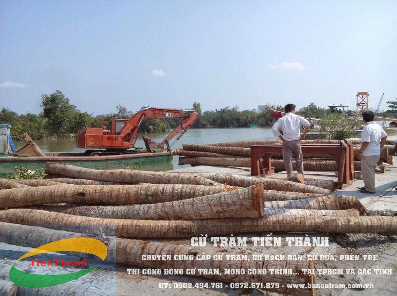 Cừ dừa Tiến Thành cung cấp cừ dừa tại TPHCM và các tỉnh lân cận như Bến Tre, Long An, Bình Dương, Vĩnh Long, Tiền Giang…