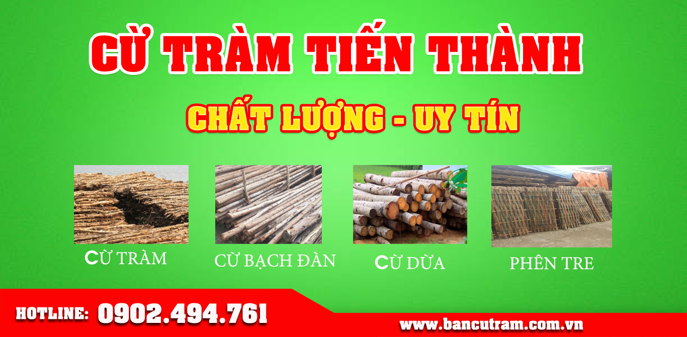 Chuyên bán cừ tràm, cừ bạch đàn tại TPHCM giá rẻ nhất