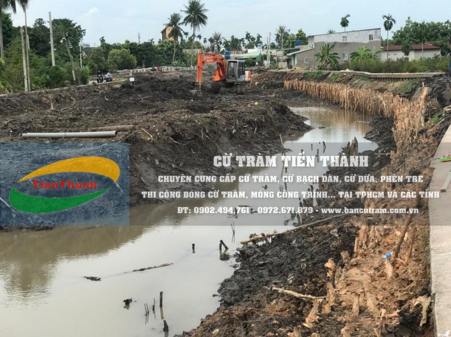 Cung cấp cừ tràm và Thi công đóng cừ tràm cho dự án kiên cố hoá kênh rạch Quận 12